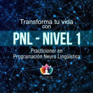 pnl practicioner nivel 1