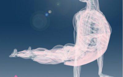 Los nervios sensoriales en el Yoga